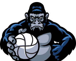 https://ikvolleybal.nl/wp-content/uploads/2018/10/ikvolleybal_gorillas.png